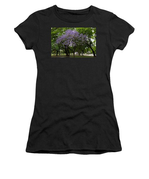 Jacaranda In The Park Women's T-Shirt