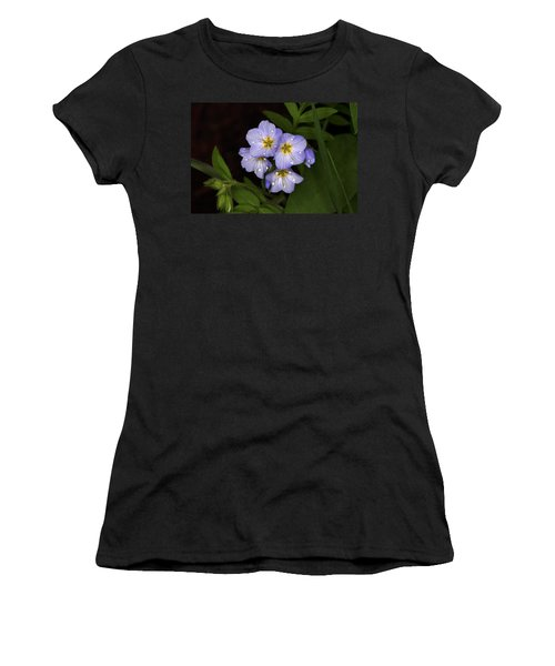 Women's T-Shirt (Junior Cut) featuring the photograph Jacobs Ladder by Alan Vance Ley