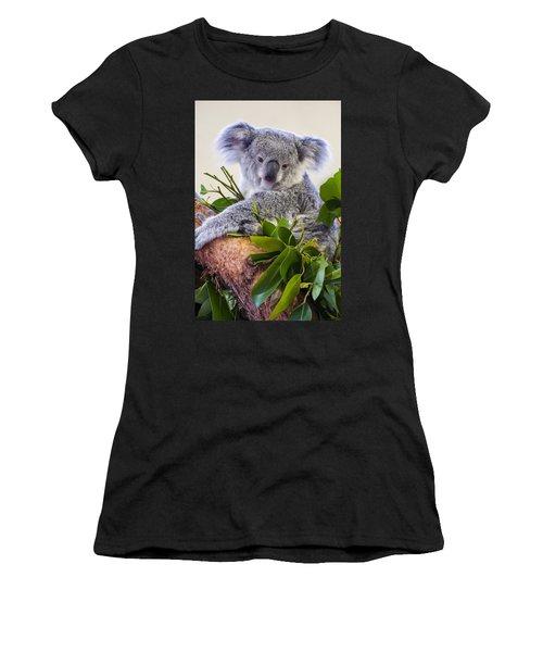 Koala On Top Of A Tree Women's T-Shirt
