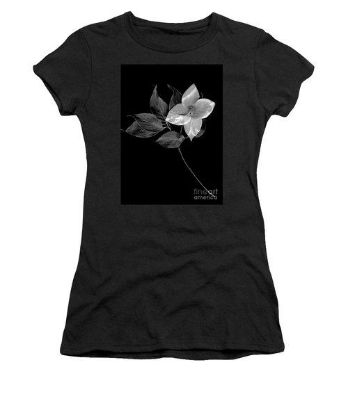 Kousa Dogwood In Black And White Women's T-Shirt