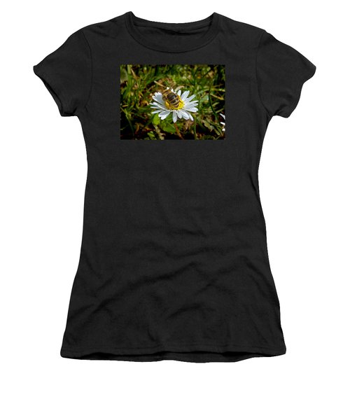 Landed Women's T-Shirt (Junior Cut) by Nina Ficur Feenan