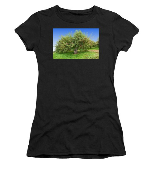 Large Apple Tree Women's T-Shirt (Athletic Fit)