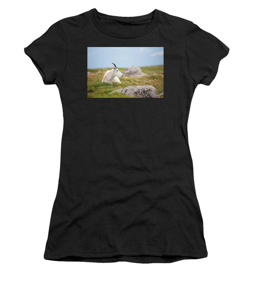 Lie Down In Green Pastures Women's T-Shirt