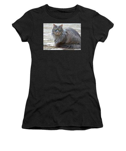 Long Haired Gray Cat Art Prints Women's T-Shirt