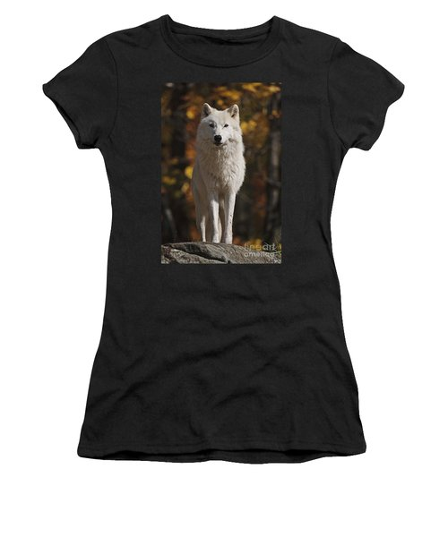 Women's T-Shirt (Junior Cut) featuring the photograph Look Out by Wolves Only