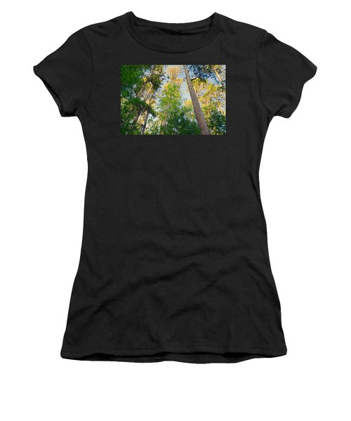 Low Angle View Of Red Pine Trees Women's T-Shirt