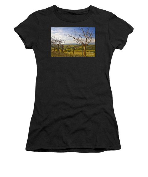 Lush Land Leafless Trees 2 Women's T-Shirt (Athletic Fit)