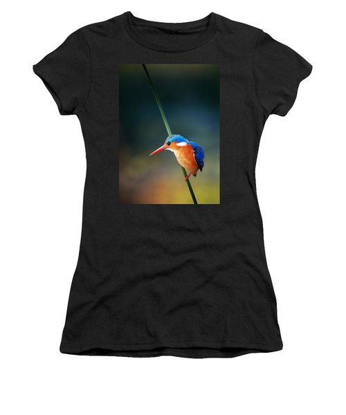 Malachite Kingfisher Women's T-Shirt (Athletic Fit)
