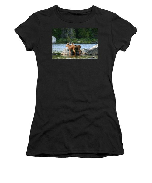 Moose Calves In Maine Women's T-Shirt (Athletic Fit)