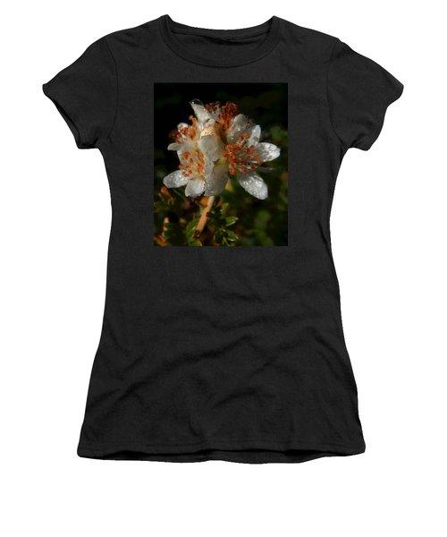 Morning Dew Women's T-Shirt (Junior Cut) by Pamela Walton