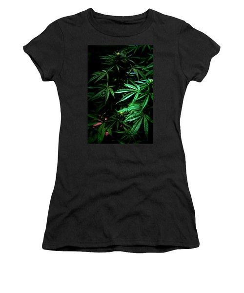 Nature's Medicine Women's T-Shirt (Junior Cut) by Jeanette C Landstrom