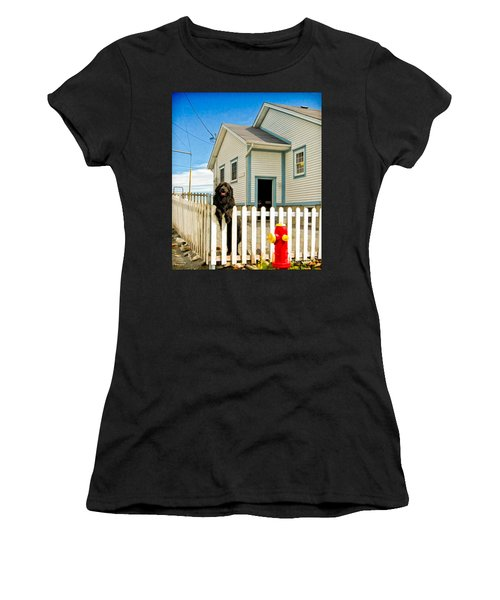 Newfoundland Dog In Newfoundland Women's T-Shirt (Athletic Fit)