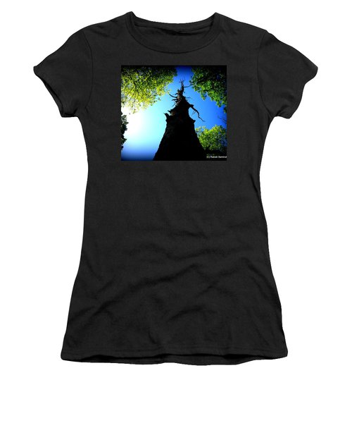 Old Trees Women's T-Shirt