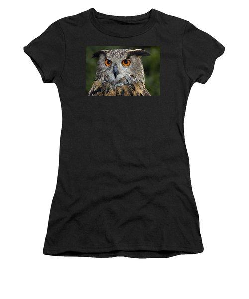 Owl Bubo Bubo Portrait Women's T-Shirt