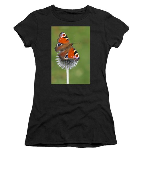 Peacock Butterfly Netherlands Women's T-Shirt