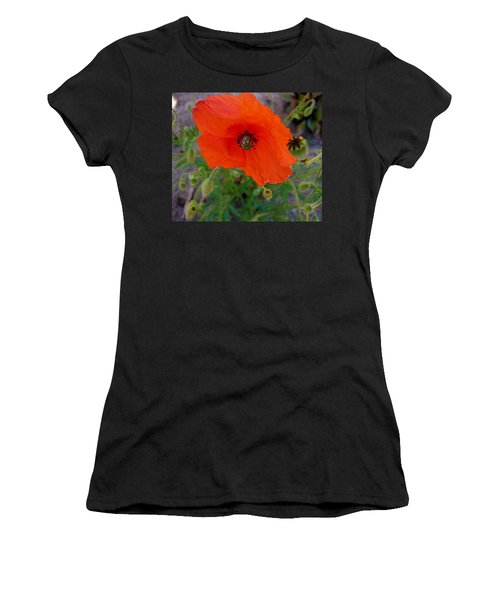 Poppy Flower Women's T-Shirt