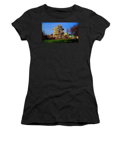 Prospect Park In Brooklyn II Women's T-Shirt