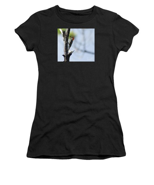 Red-bellied Woodpecker Women's T-Shirt (Athletic Fit)