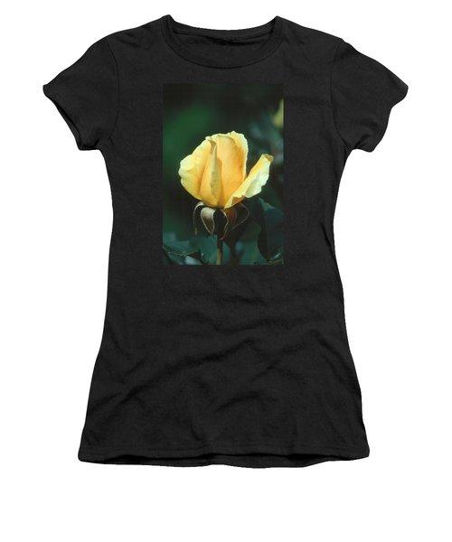 Rose 2 Women's T-Shirt (Junior Cut) by Andy Shomock