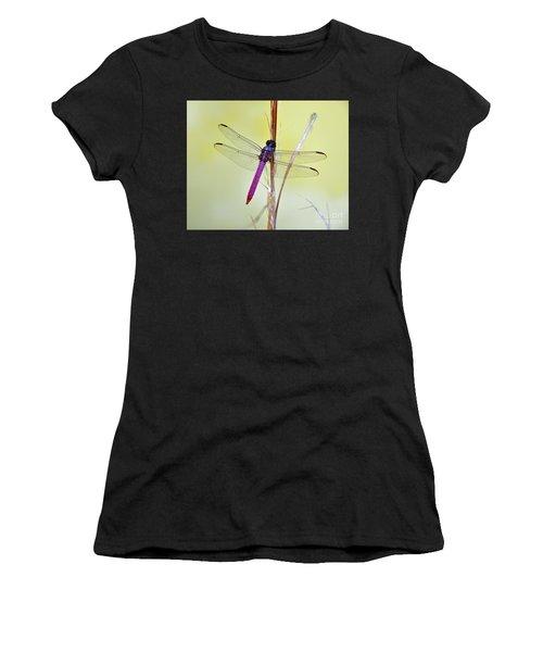 Roseate Skimmer Dragonfly Women's T-Shirt