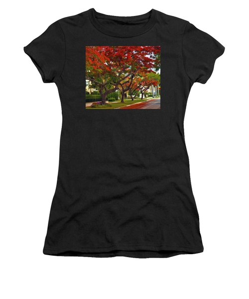 Royal Poinciana Trees Blooming In South Florida Women's T-Shirt (Athletic Fit)