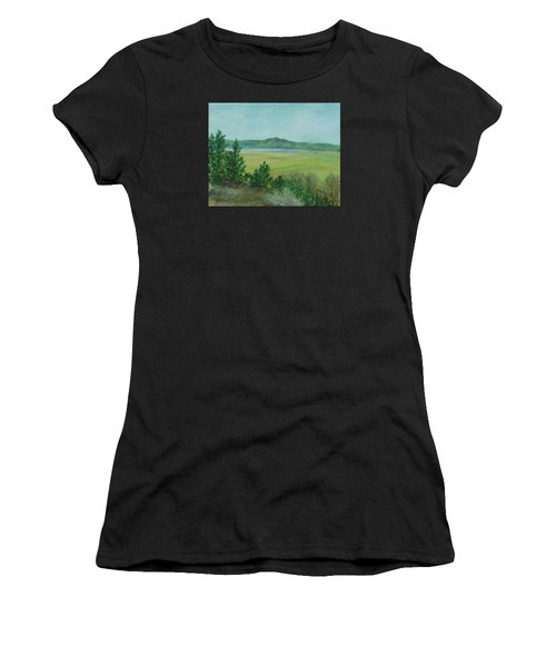 Rural Landscape Art Original Colorful Oil Painting Swan Lake Oregon  Women's T-Shirt (Athletic Fit)
