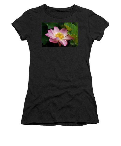 Sacred Lotus Women's T-Shirt