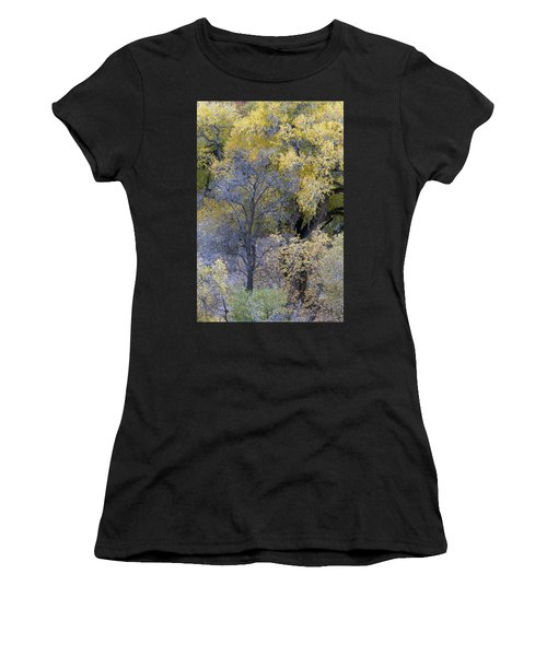 Sedona Fall Color Women's T-Shirt