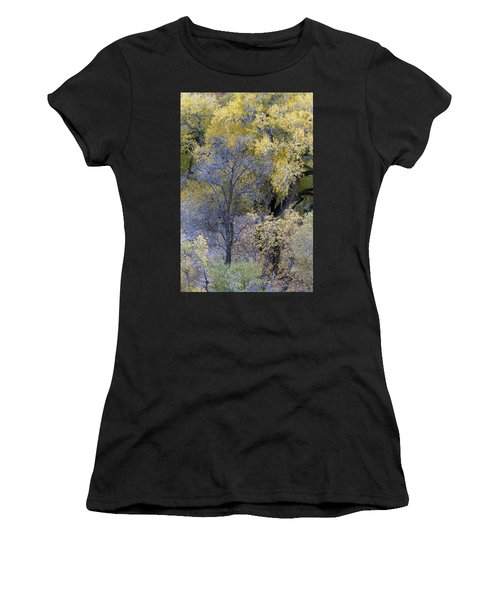 Sedona Fall Color Women's T-Shirt (Athletic Fit)