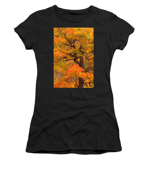 Shapely Maple Tree Women's T-Shirt