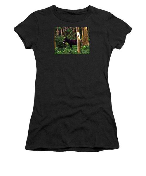 Shhh I'm Hiding Women's T-Shirt (Junior Cut) by Patricia Griffin Brett