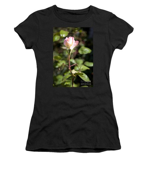 Women's T-Shirt (Junior Cut) featuring the photograph Single Rose by David Millenheft