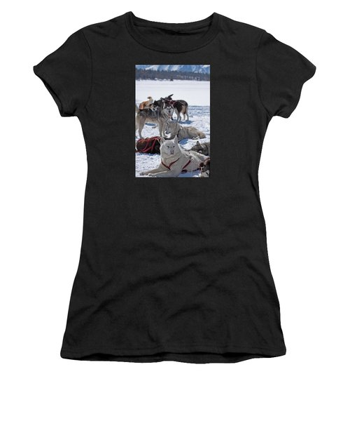 Sled Dogs Women's T-Shirt (Athletic Fit)