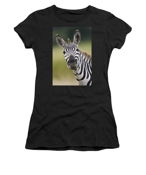 Women's T-Shirt featuring the photograph Smiling Burchells Zebra by Suzi Eszterhas