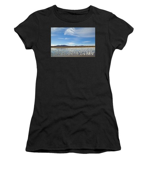 Snow Geese Bosque Del Apache  Women's T-Shirt