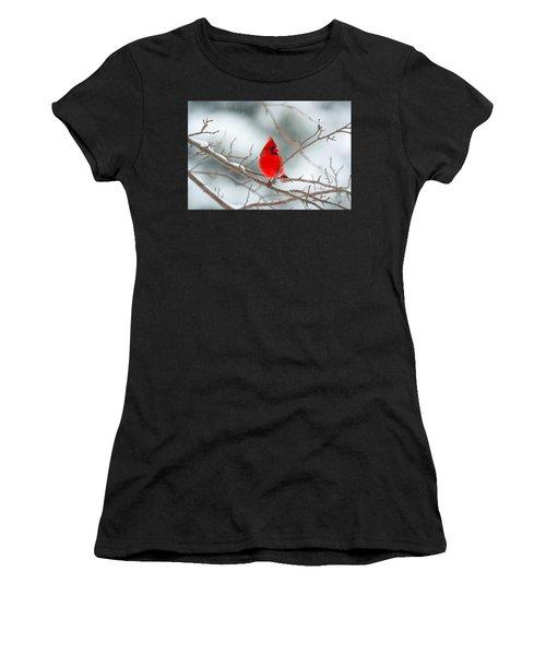 Snowy Cardinal Women's T-Shirt (Athletic Fit)