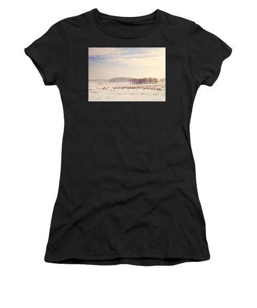 Snowy Valley Women's T-Shirt (Athletic Fit)
