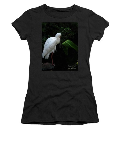 Spoonbill Morning Women's T-Shirt (Junior Cut) by Greg Patzer