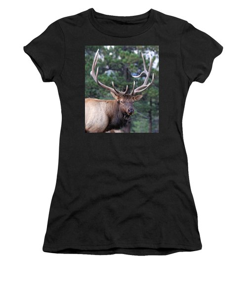Stare Down Women's T-Shirt