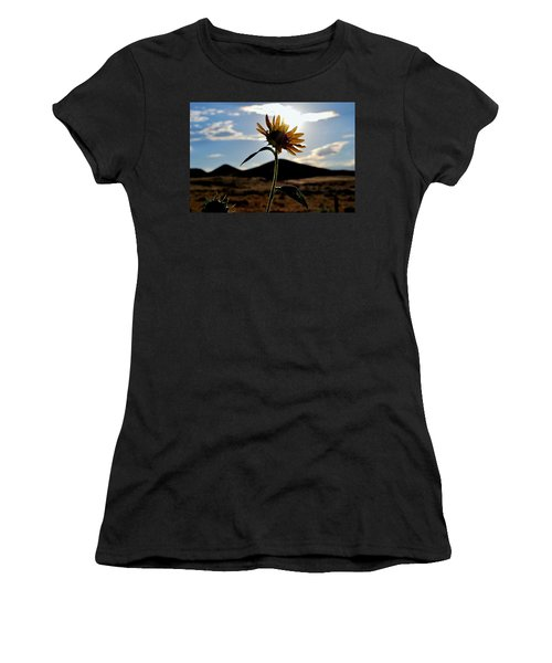 Sunflower In The Sun Women's T-Shirt (Junior Cut) by Matt Harang
