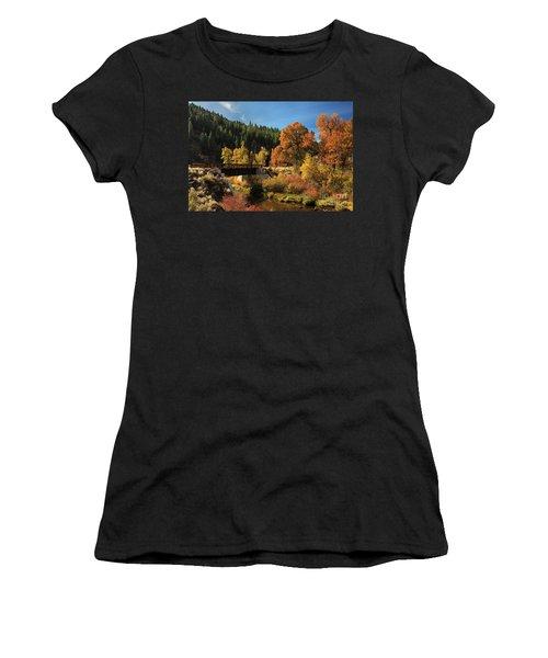 Susan River Bridge On The Bizz 2 Women's T-Shirt