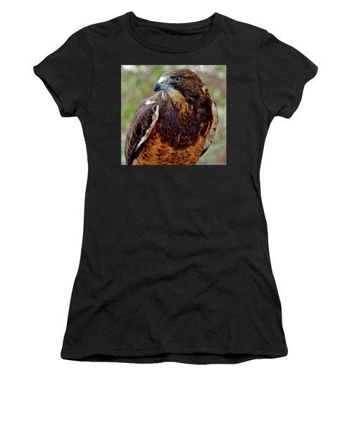 Swainson's Hawk Women's T-Shirt (Athletic Fit)