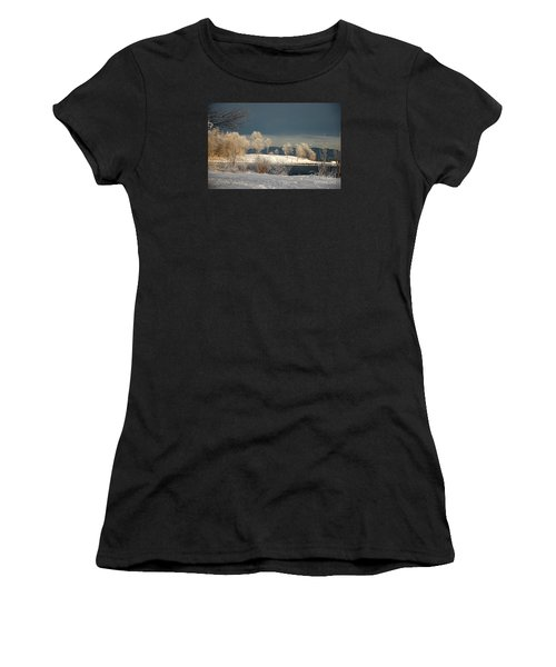 Swans On A Frosty Day Women's T-Shirt