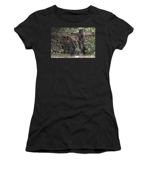 sweet heart - A tender foal wait his beloved mother  Women's T-Shirt (Athletic Fit)