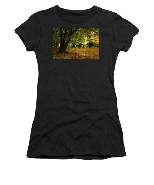 The Beauty Of Autumn Women's T-Shirt