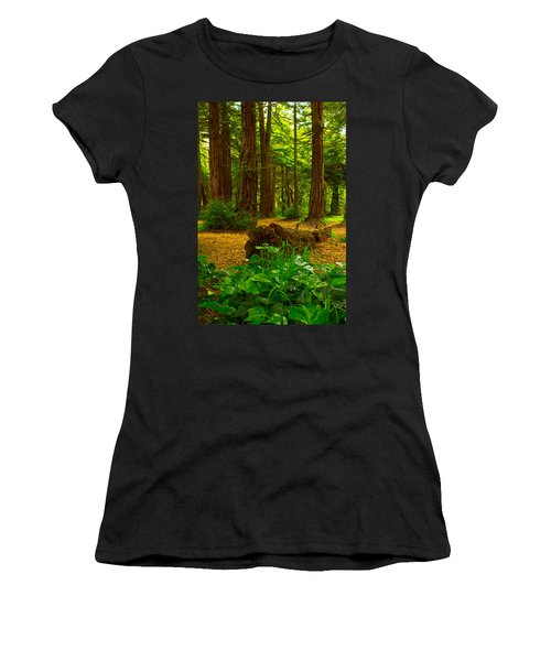 The Forest Of Golden Gate Park Women's T-Shirt