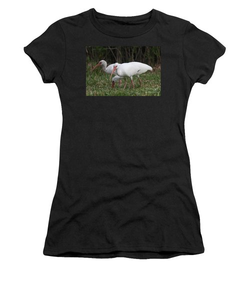 Women's T-Shirt (Junior Cut) featuring the photograph Three Ibis Together by Christiane Schulze Art And Photography