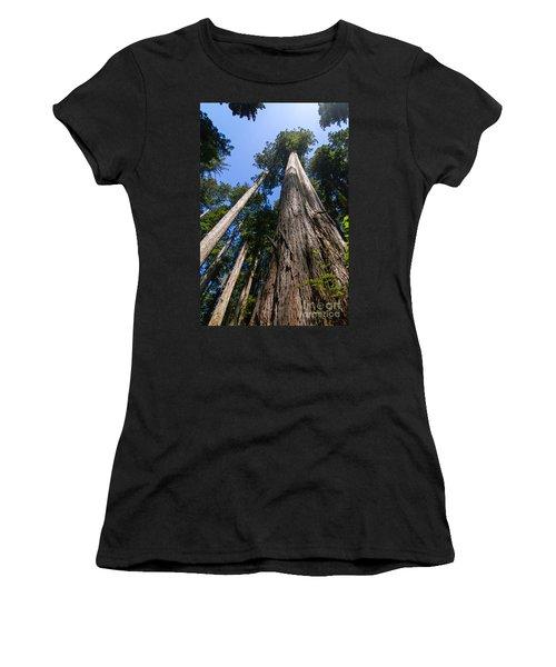 Towering Redwoods Women's T-Shirt (Junior Cut) by Paul Rebmann