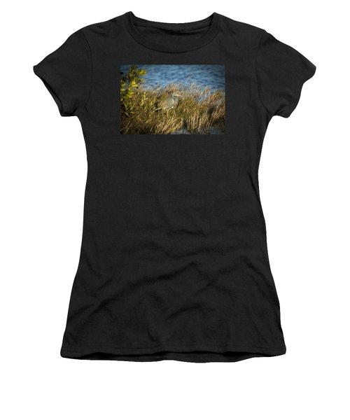 Tricolored Heron Hunting Merritt Island Florida Women's T-Shirt