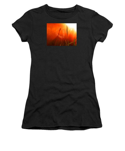 The Spider's Web In Golden Sunlight Women's T-Shirt (Athletic Fit)